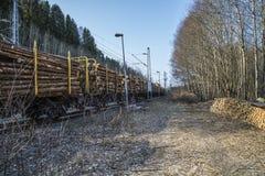 Transporte de la madera Imagen de archivo libre de regalías