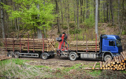 Transporte de la madera de construcción Imagenes de archivo