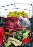 Transporte de las rosas Fotografía de archivo