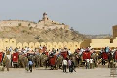 Transporte del elefante Fotografía de archivo libre de regalías