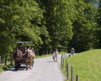 Transporte do cavalo Fotos de Stock