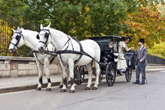 Transporte do cavalo com pares vestidos antiquados Imagens de Stock