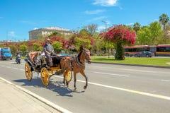 Transporte do cavalo em Sevilha Imagem de Stock