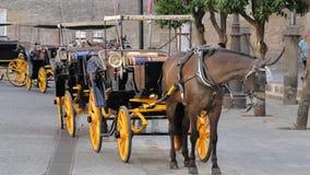 Transporte do cavalo em Sevilha, Espanha Fotos de Stock