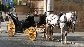Transporte do cavalo em Sevilha, Espanha Imagens de Stock Royalty Free