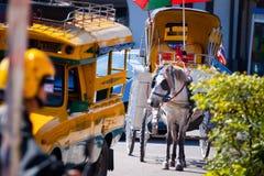 Transporte do cavalo em Tailândia fotografia de stock royalty free