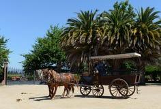 Transporte do cavalo na adega de Viu Manent Fotografia de Stock