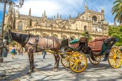 Transporte do cavalo na catedral de Sevilha Fotos de Stock
