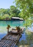 Transporte en balsa en la batería de la laguna azul, Jamaica Fotografía de archivo libre de regalías