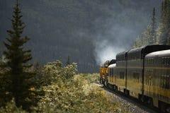 Transporte interior de Alaska pelo trem Imagem de Stock Royalty Free