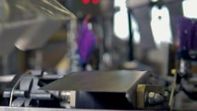 Transporte moderno da tecnologia de alimento Linha de produção automatizada na planta do empacotamento de alimento filme