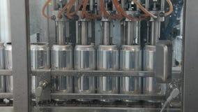 Transporte para latas de alumínio de enchimento Os bancos estão movendo-se ao longo de uma correia transportadora e a máquina der video estoque