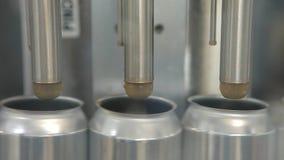 Transporte para latas de alumínio de enchimento Os bancos estão movendo-se ao longo de uma correia transportadora e a máquina der filme