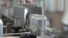 Transporte para latas de alumínio de enchimento Os bancos movem-se ao longo do transporte e a pessoa classifica-os video estoque
