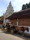 Transporte para o cavalo Foto de Stock Royalty Free