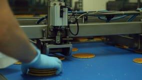 Transporte para a produção de cookies na fábrica dos confeitos video estoque