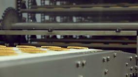 Transporte para a produção de cookies na fábrica dos confeitos vídeos de arquivo