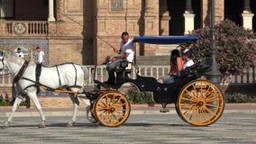 Transporte puxado a cavalo com turistas vídeos de arquivo