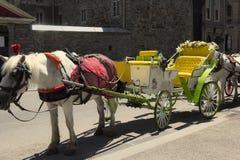 Transporte puxado por cavalos em Montreal imagem de stock