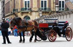 Transporte puxado por cavalos tradicional em Amsterdão, os Países Baixos imagem de stock