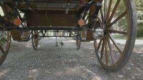 Transporte retro do vintage tirado por um cavalo filme