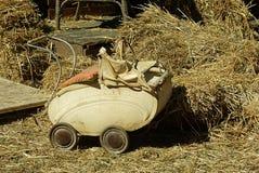 Transporte velho da boneca Foto de Stock Royalty Free