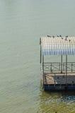 Transporter de l'eau photographie stock