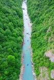 Transporter sur par radeau le fleuve Tara au Monténégro Image stock