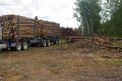 transportering av trä Royaltyfri Foto