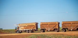 Transporteur de canne à sucre Photo stock