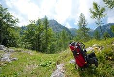 Transporteur de chéri dans les alpes Image stock