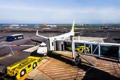 Transporteur de Jin Air à l'aéroport international de Jeju photo libre de droits