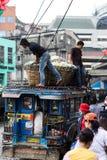 Transporteurs végétaux Photo libre de droits