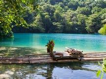 Transportez par radeau sur le côté de la lagune bleue, Jamaïque photographie stock libre de droits