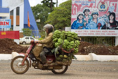Transporting Bananas in Vietnam. A driver carries a large load of bananas past a on his motorbike in Buon Ma Thout in the Central Highlands of Vietnam Stock Photo