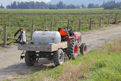 Transporting Chemicals for Berries. A small tractor is used for transporting chemicals that will be sprayed on a blueberry crop Stock Images