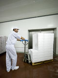 Transporting polystyrene boxes. A worker pulling a cart full of white polystyrene boxes, full of filleted fish, ready to be transported. Interior of a cold Stock Images