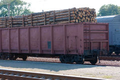 Transporting wooden logs Stock Photography