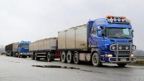 Transportsträcka Sugar Beet för två Skåne lastbilar Royaltyfri Bild