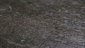 Transportwagenzoomeffekt des fallenden Regens schlägt den grauen Fliesenboden Welches eine einsame Stimmung in der Regenzeit gibt stock video footage