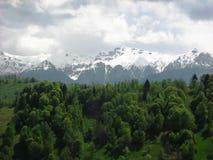 Transsylvanië, Fagaras-bergen stock foto