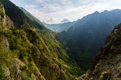 Transsylvanië, Roemenië, Europa stock foto's