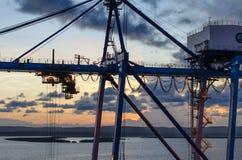 Transtainer Fotografia Stock