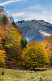Transylvania autumn landscape Stock Photos