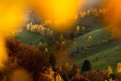 Transylvania landscape in autumn time , Romania country side. Transylvania landscape in autumn , Romania country side with traditional wood house royalty free stock photo
