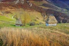 Transylvania Rumunia Zdjęcia Royalty Free