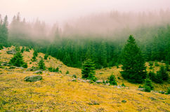 Transylvania's Foggy Mountains. Stony landscape in Transylvania`s foggy mountains stock photography