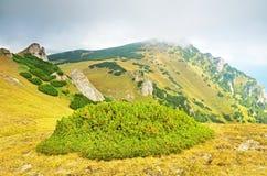 Transylvania, Sinaia, Румыния стоковое изображение