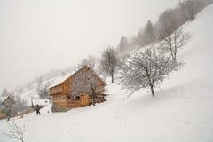 Transylvania zimy krajobraz w Otrębiastym terenie, Brasov okręg administracyjny fotografia royalty free