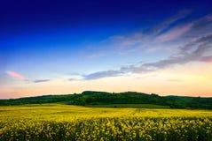Transylvanian Landschaft Stockfoto